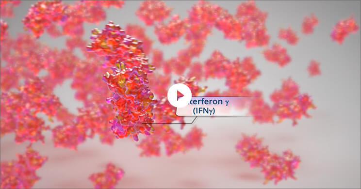 IFN is a driver of hyperinflammation video